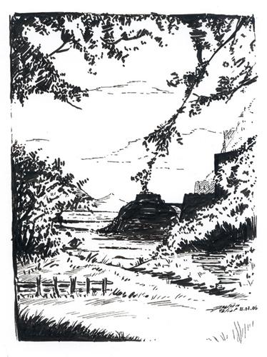 paysage5